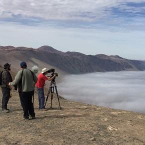 Filman documental sobre captación de agua de niebla en Estación UC Alto Patache