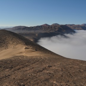 Viendo a través de las nubes - Científicos revelan enormes nuevas áreas de ecosistemas de niebla amenazados en Perú y Chile
